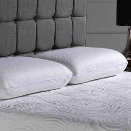 V40 Pair Memory Foam Pillows With Cool Max Cover 50% Reduced!